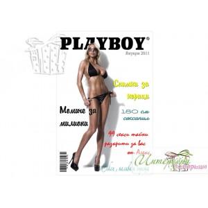 "Колаж - Корица на списание ""Playboy"""